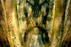 Estatua de Buda compasivo en medio de un bosque.