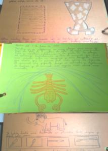 dibujos a mano alzada de elefante, plumas de escribir, langosta y vestido de flores