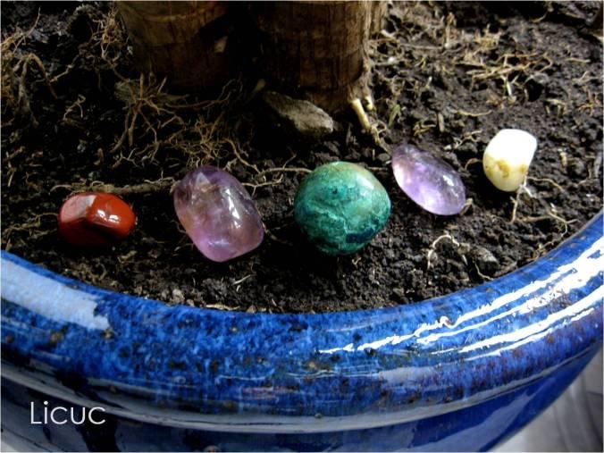 jaspe, amatista, ametrino, crisocola y adularia sobre tierra de una maceta