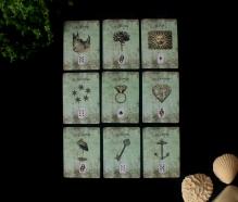 cartas lenormand de baraja licuc jardín flores sol estrellas sortija corazón cigüeña llave ancla en medio de planta lágrimas de ángel y trozo de coral concha y roca lisa